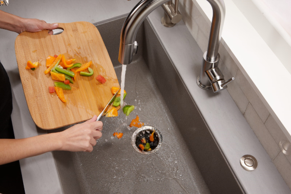 The Garbage Disposal From Luxury To Standard Equipment
